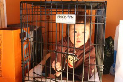 cage4.jpg